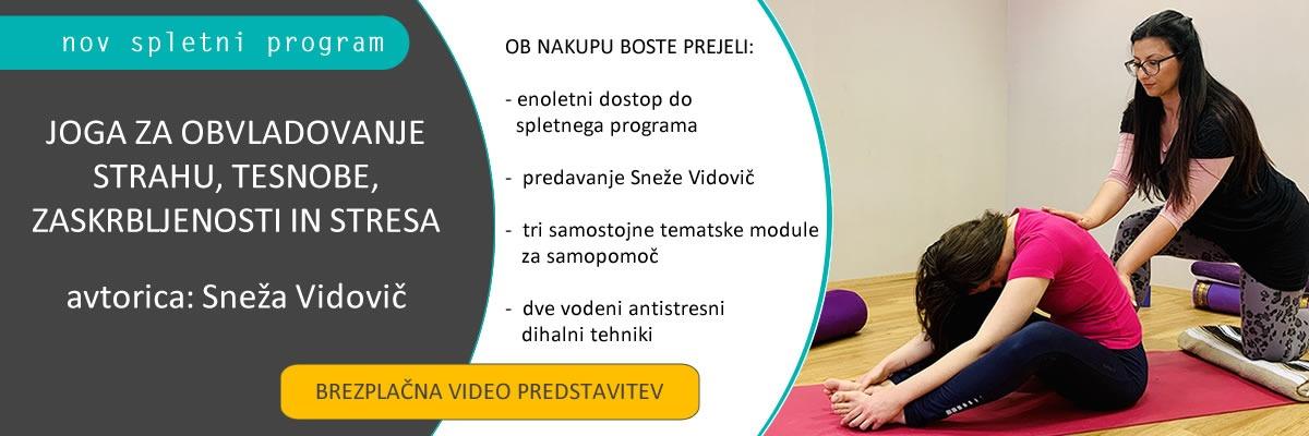 online joga program